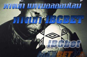 ibcbet-maxbet-face